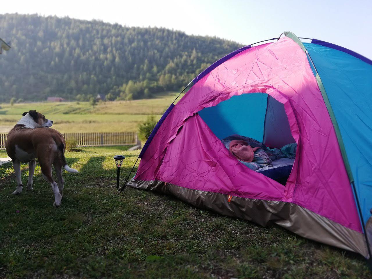kampovanje u srbiji sator pas priroda