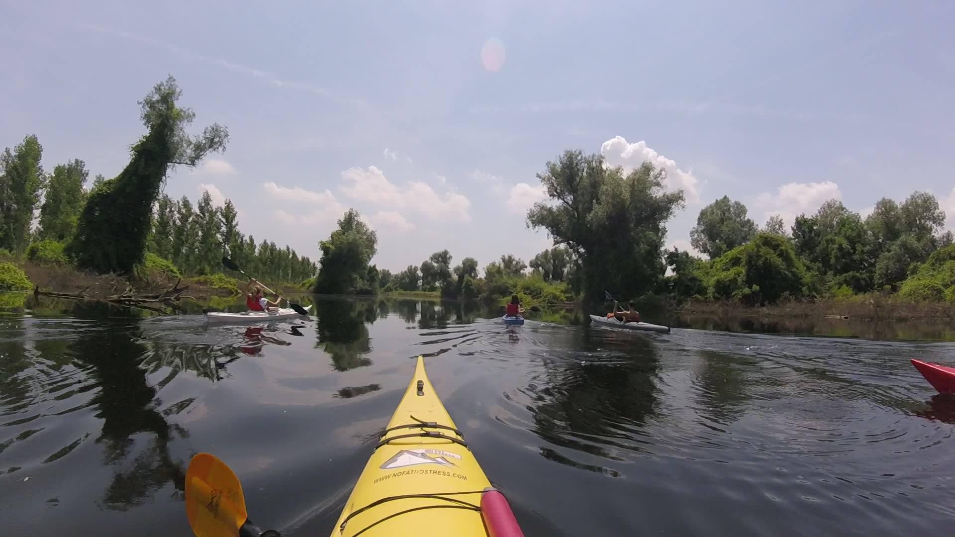 kajak avnatura dunav veslanje no fat no stress beogradska amazonija